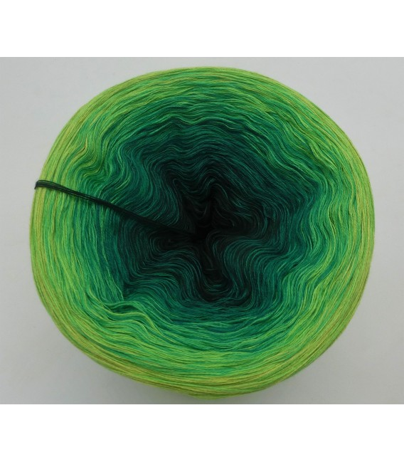 Impressionen Nr. 18 (Impressions No. 18) - 4 ply gradient yarn - image 3