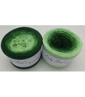 Evergreen - 4 нитевидные градиента пряжи