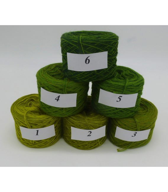 Merino Bobbelbox MB003 with 6 small and 4-ply Bobbel - image 2