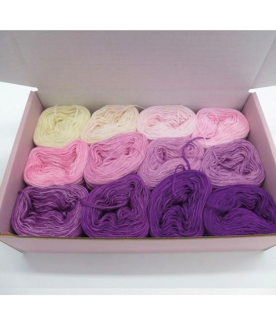 treasure chest - Traumland - gradient yarn - image 1