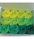 treasure chest - Irland - gradient yarn