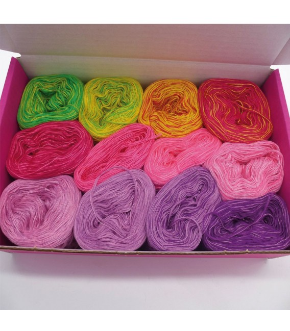 treasure chest - Land der Schmetterlinge - gradient yarn - image 1