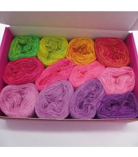 treasure chest - Land der Schmetterlinge - gradient yarn - image 1