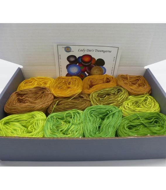 treasure chest - Land im Orient - gradient yarn - image 2