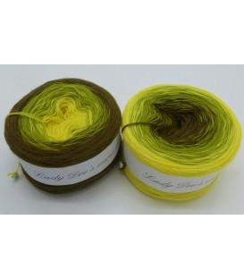 100g Bobbel Merino - V001 - gradient yarn - image 1