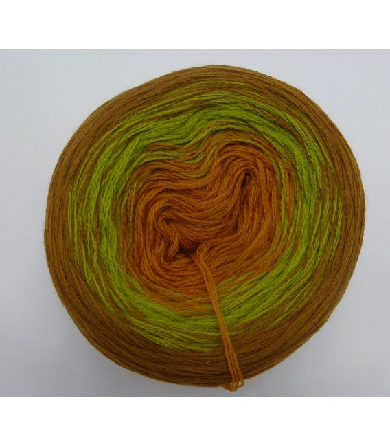 100g Bobbel Merino - V002 - fils de gradient - photo 1