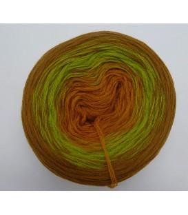 100g Bobbel Merino - V002 - gradient yarn - image 1