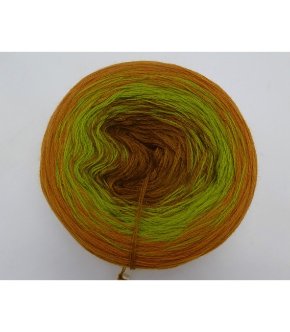 100g Bobbel Merino - V002 - fils de gradient - photo 2