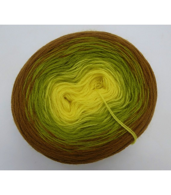 100g Bobbel Merino - V002 - fils de gradient - photo 3