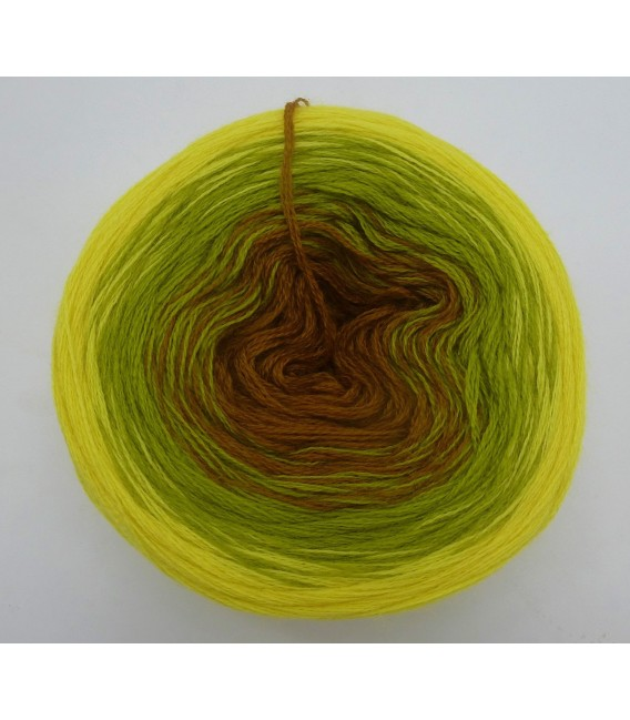 100g Bobbel Merino - V002 - fils de gradient - photo 4