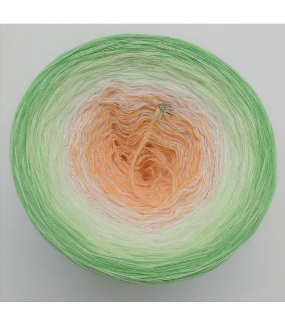 Januar (January) Bobbel 2020 with glitter - 4 ply gradient yarn - image 5