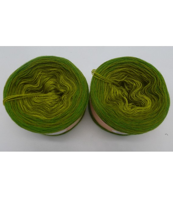 Sock wool - 2 Bobbel á 50g - 002 - gradient yarn - image 2