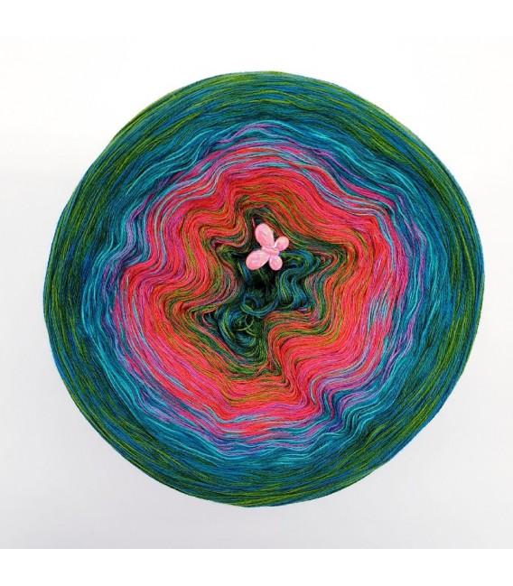 Hippie Lady - Eden - 4 ply gradient yarn - image 2