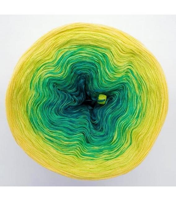Limonen (Citrons verts) - 4 fils de gradient filamenteux - photo 6