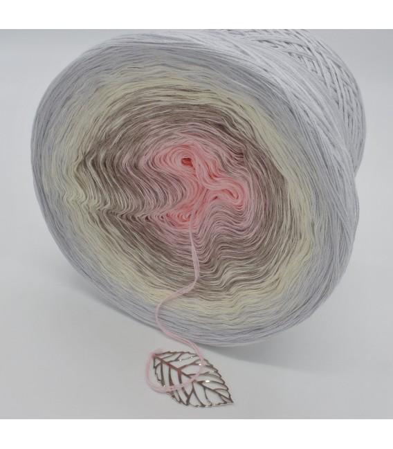 Venus - 4 ply gradient yarn - image 5