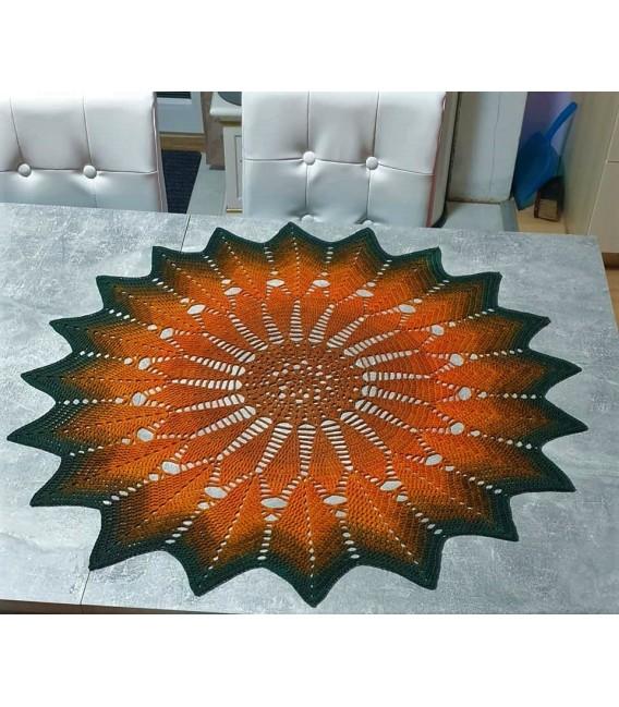 Schwärmerei (enthusiasm) - 4 ply gradient yarn - image 10