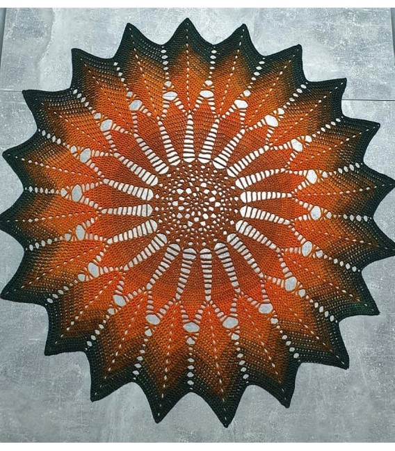 Schwärmerei (enthusiasm) - 4 ply gradient yarn - image 11
