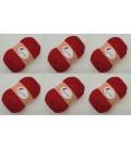 6 x Weihnachtsstern mit Salsa Red Glitzer