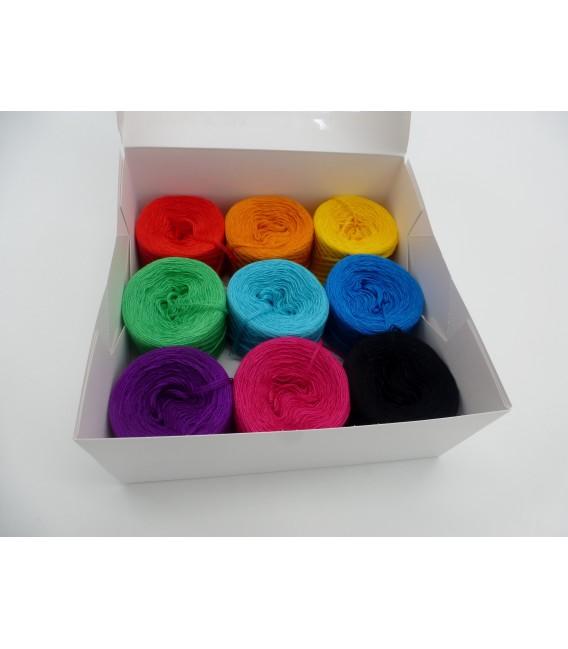 Un paquet Bobbelinchen Lady Dee's Farben des Lebens (Couleurs de vie) (3 fils - 900m) - Multicolor - Photo 2