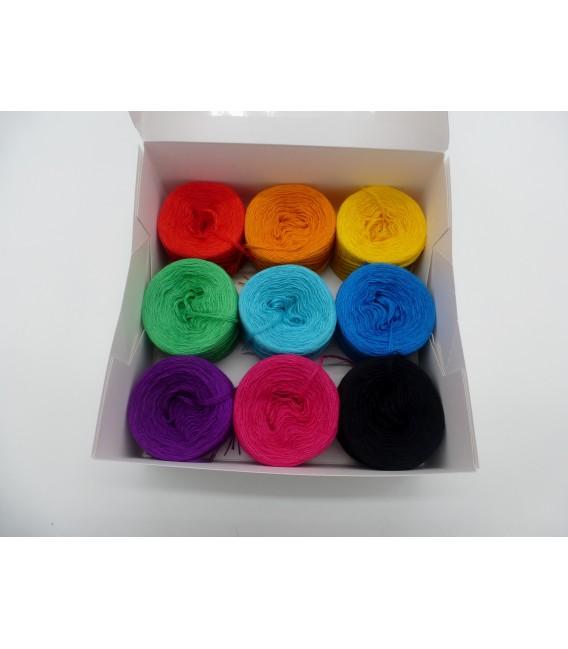 Un paquet Bobbelinchen Lady Dee's Farben des Lebens (Couleurs de vie) (3 fils - 900m) - Multicolor - Photo 3