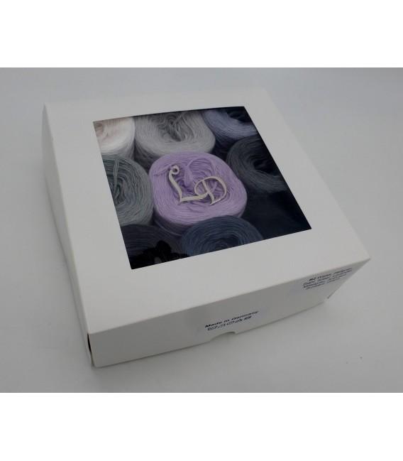 Un paquet Bobbelinchen Lady Dee's Farben des Lebens (Couleurs de vie) (4 fils - 900m) - Teintes grises - Photo 2