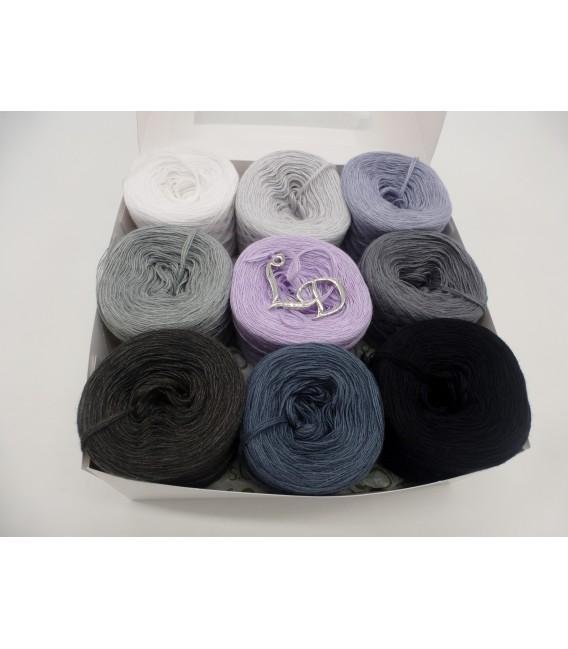 Un paquet Bobbelinchen Lady Dee's Farben des Lebens (Couleurs de vie) (4 fils - 900m) - Teintes grises - Photo 4