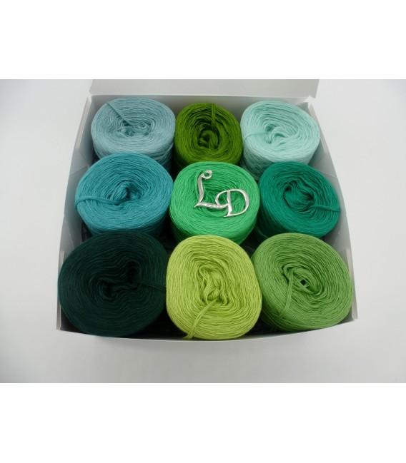 Un paquet Bobbelinchen Lady Dee's Farben des Lebens (Couleurs de vie) (4 fils - 900m) - Teintes verte - Photo 1