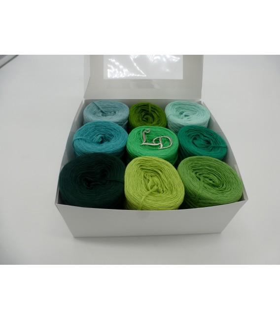 Un paquet Bobbelinchen Lady Dee's Farben des Lebens (Couleurs de vie) (4 fils - 900m) - Teintes verte - Photo 2