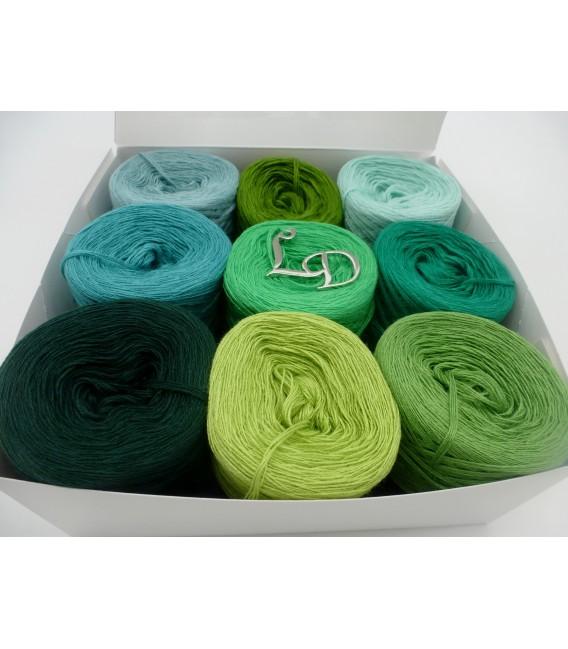 Un paquet Bobbelinchen Lady Dee's Farben des Lebens (Couleurs de vie) (4 fils - 900m) - Teintes verte - Photo 4
