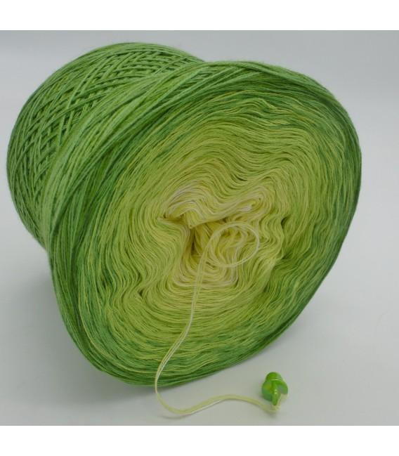 Kiwi küsst Limette - 3 ply gradient yarn image 4