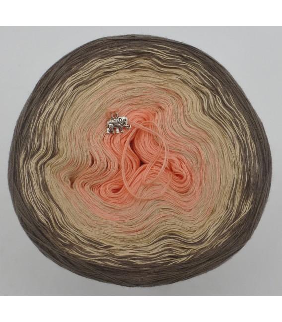 Geheime Wünsche - 3 ply gradient yarn image 3