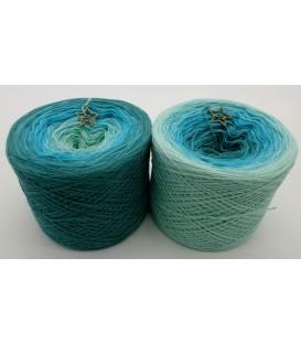 Auf hoher See - 3 ply gradient yarn