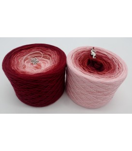 Röschen Rot - 2 ply gradient yarn image 1