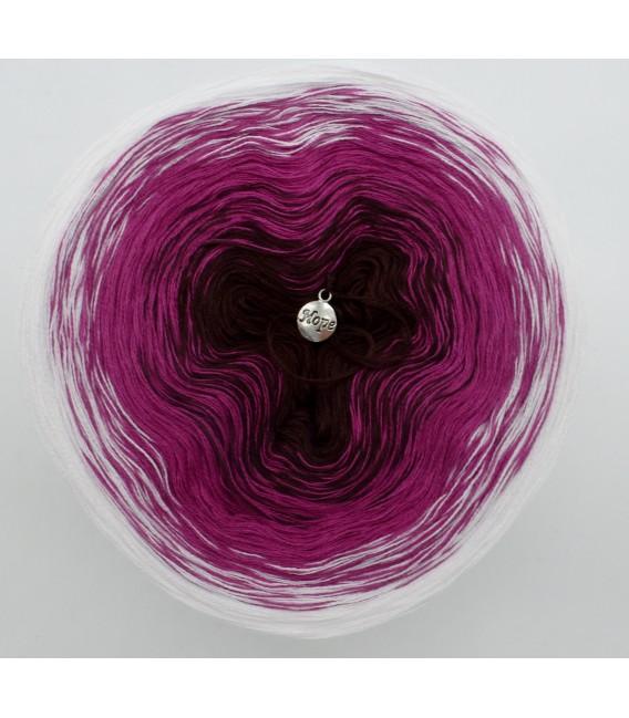 Schwarzwälder Kirsch - 3 ply gradient yarn image 3