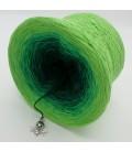 gradient yarn Frühlingsboten - Apple green outside 4