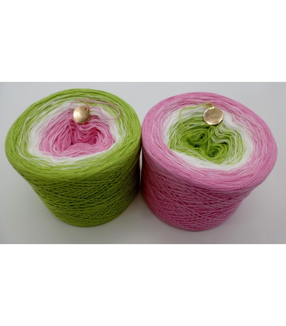 Zarte Blüten (нежные цветы) - 3 нитевидные градиента пряжи - Фото 1
