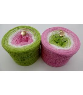 Zarte Blüten - 3 ply gradient yarn image
