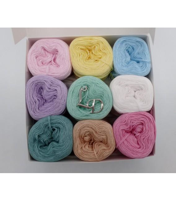 Un paquet Bobbelinchen Lady Dee's Farben des Lebens (Couleurs de vie) (4 fils - 900m) - couleurs pastel. - Photo 3