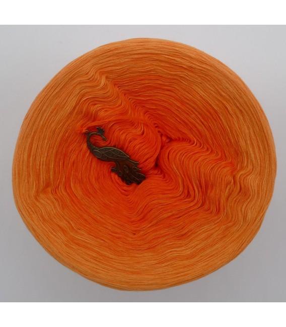 Farben der Freude (Colors of joy) - 4 ply gradient yarn - image 7