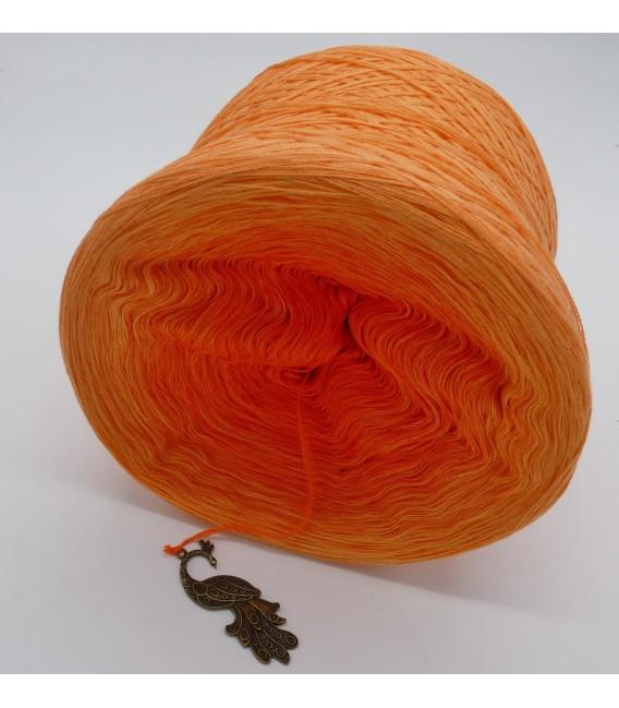 Farben der Freude (Colors of joy) - 4 ply gradient yarn - image 8