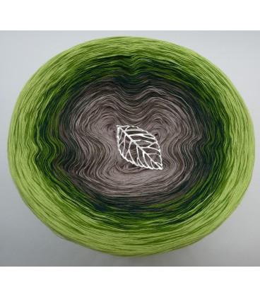 Naturgewalt (forces of nature) - 4 ply gradient yarn - image 7