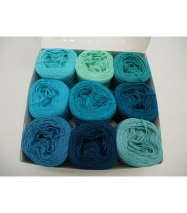 Un paquet Bobbelinchen Lady Dee's Farben des Lebens (Couleurs de vie) (4 fils - 900m) - Teintes turquoises - photo 4
