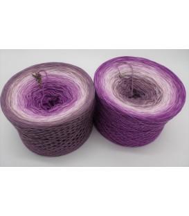 Märchenhafte Begegnung - 4 ply gradient yarn
