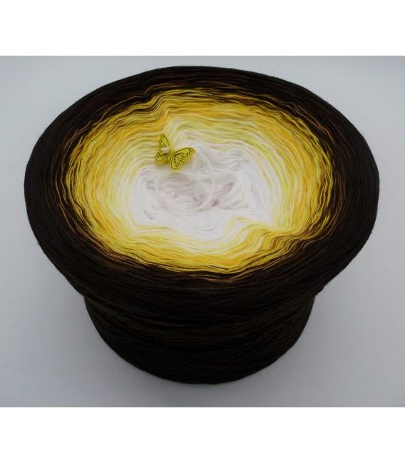 Savanna - 4 ply gradient yarn - image 1