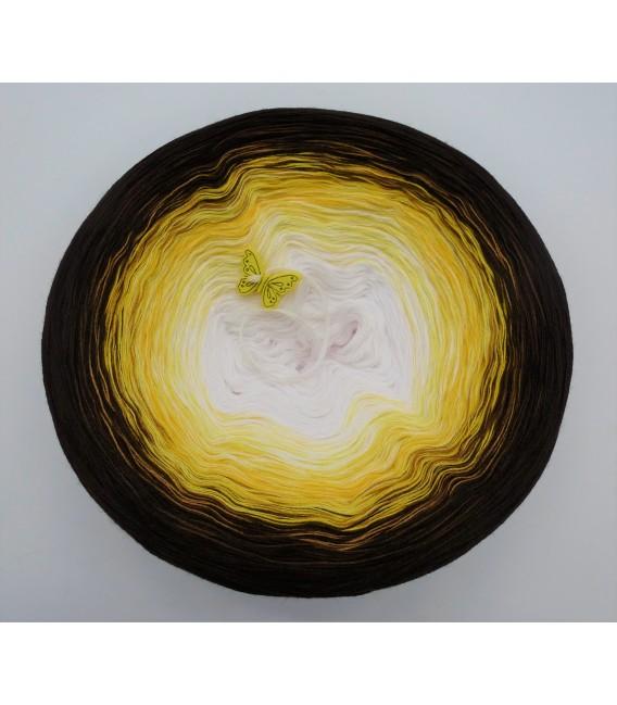 Savanna - 4 ply gradient yarn - image 2