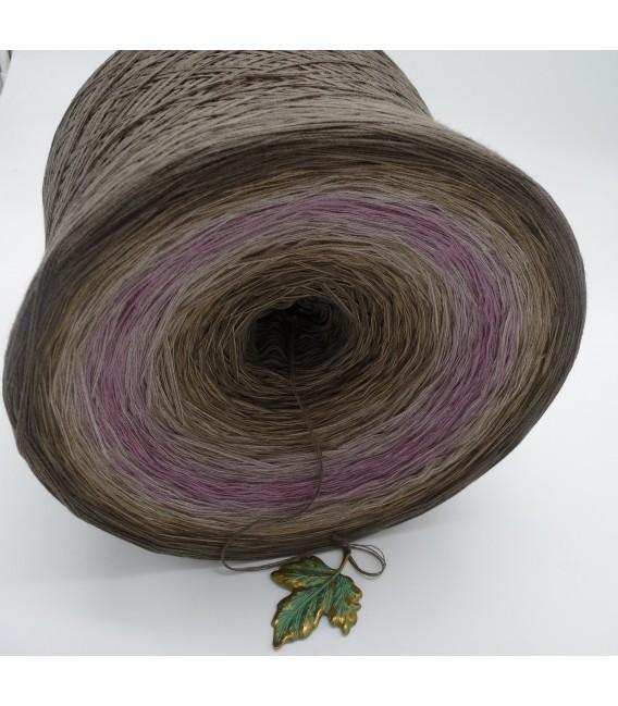 Ein Hauch Rosenholz (Прикосновение розового дерева) Гигантский Bobbel - 4 нитевидные градиента пряжи - Фото 5