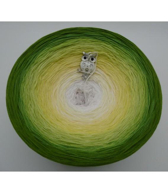 Grüne Aue im Sonnenlicht Gigantischer Bobbel - Farbverlaufsgarn 4-fädig - Bild 3