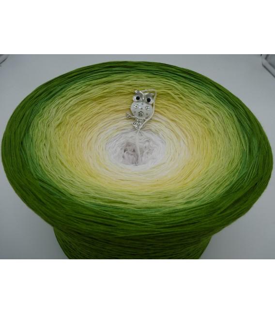 Grüne Aue im Sonnenlicht Gigantischer Bobbel - Farbverlaufsgarn 4-fädig - Bild 2