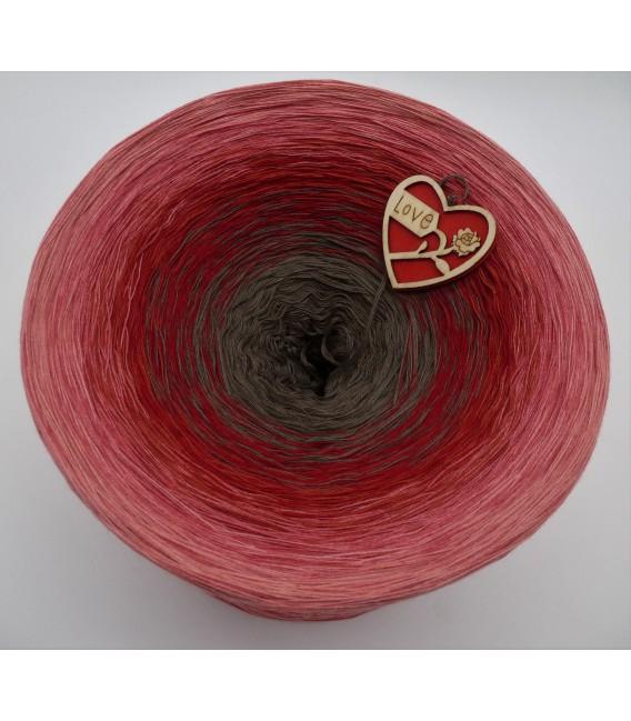 Bella Rosa Gigantic Bobbel - 4 ply gradient yarn - image 3