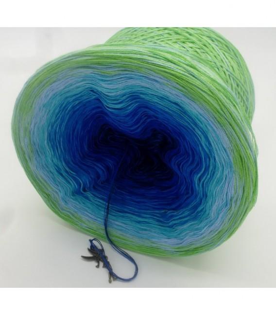 Korallenriff (Coral reef) - 4 ply gradient yarn - image 8